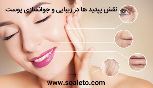 پپتید برای پوست ، پپتید برای زیبایی پوست ، پپتید برای سلامت و شادابی پوست ، پپتید برای جوانسازی و کلاژن سازی پوست ، پپتید برای مراقبت از پوست ، پپتید ضد چروک ، پپتید جوان کننده ، پپتید کلاژن ساز